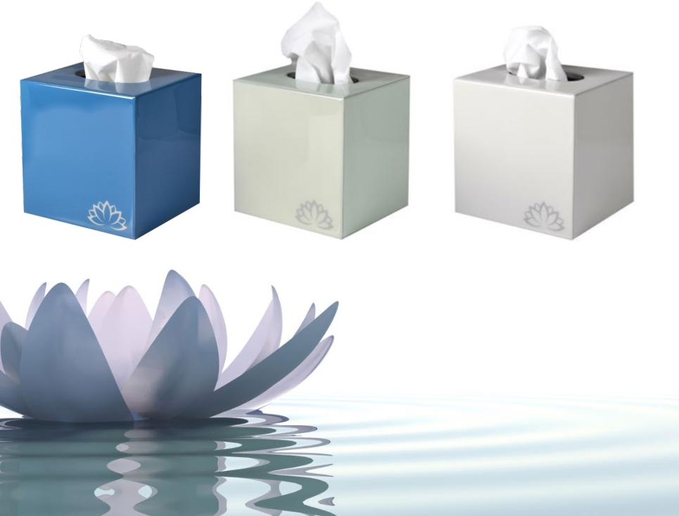 Lotus, by Mike + Ally