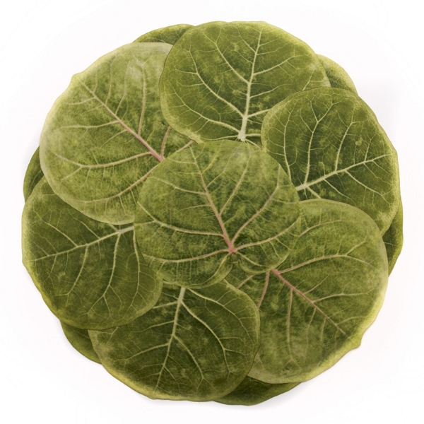 Seagrape Leaf placemat